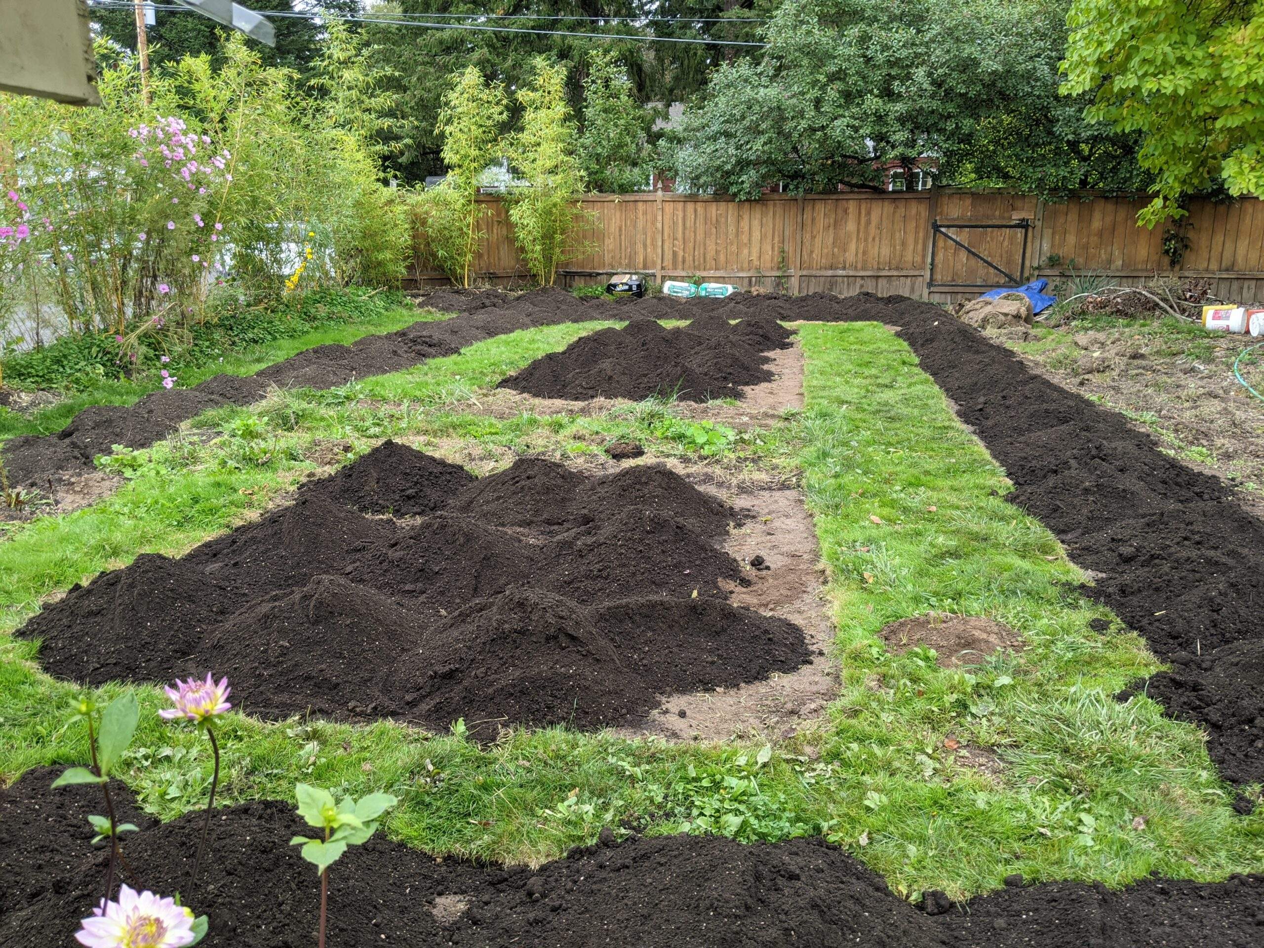 garden beds with piles of compost ready for planting