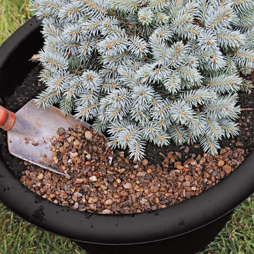 adding gravel to container planting