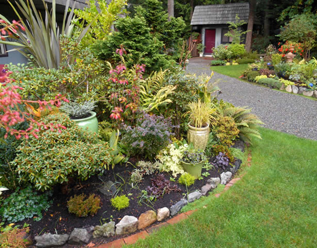 garden bed full of great foliage plants