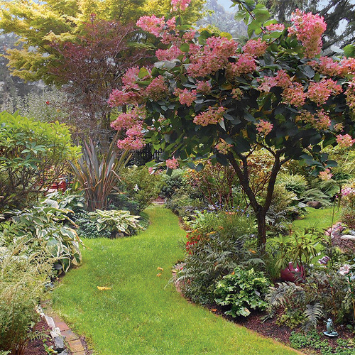 a garden that embraces shade