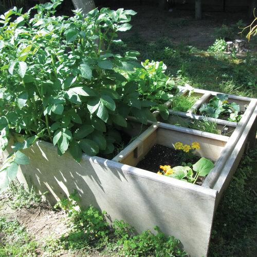 5 Tips for a Better Garden