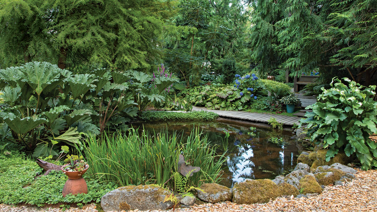 A big impression is just the start. Dramatic elements—for example, the large leaves of a gunnera or a bog filled with water—are sure to dazzle, but subtler elements, such as a well-placed container, add charm to power and make an area memorable for many reasons.
