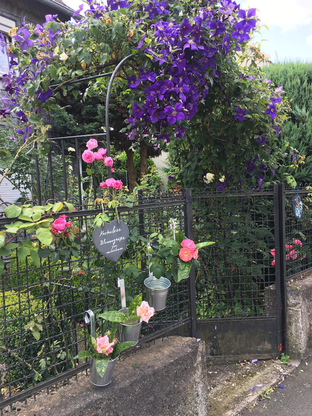Free bouquets hanging on the garden fence for anyone passing by to take away
