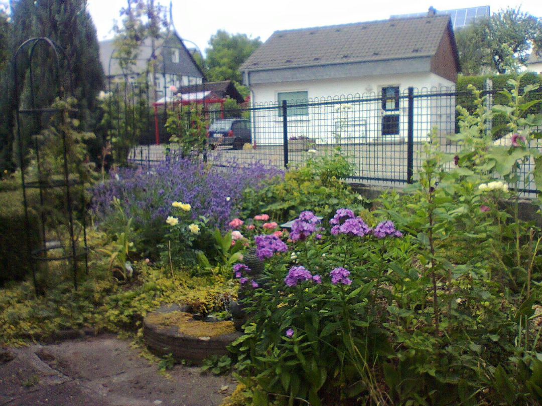 The garden has a panoramic view and the flowers are in full bloom.