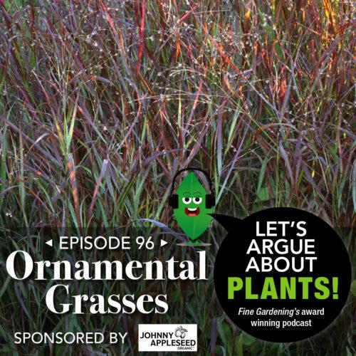 Episode 96: Favorite Ornamental Grasses