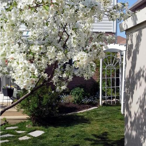 Mobile Me A Landscape Design App That Gets Personal: Springtime Beauty In Canada