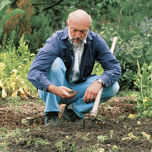 Essential Tools For Working The Soil Finegardening