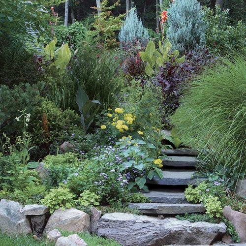 Creating A Low Maintenance Garden Finegardening