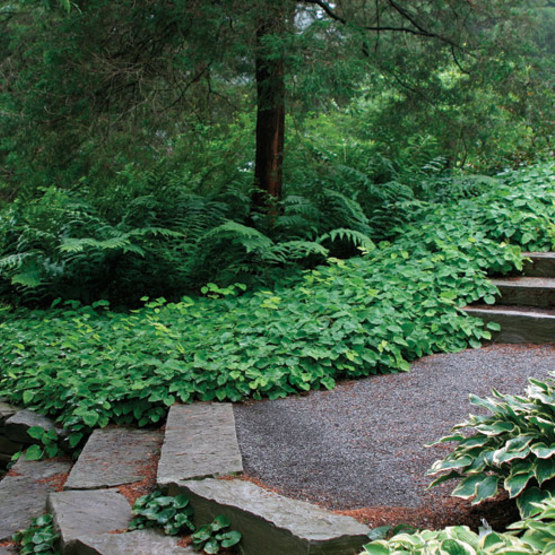 A Garden Designer Offers Advice For Creating Enjoyable, Livable Garden  Spaces