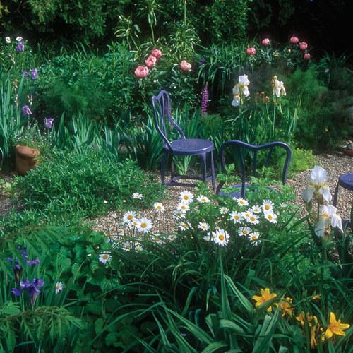 Cottage Garden with a Twist - FineGardening on cottage gardens zone 10, trees zone 3, roses zone 3,