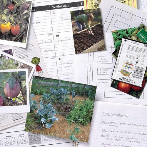 How to Plan a Vegetable Garden - FineGardening