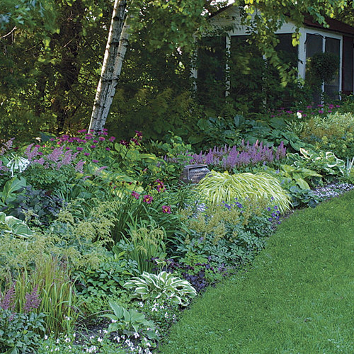 Small Trees For Borders: A Strategy For A Long Border
