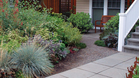 a front yard makeover - Front Yard Garden