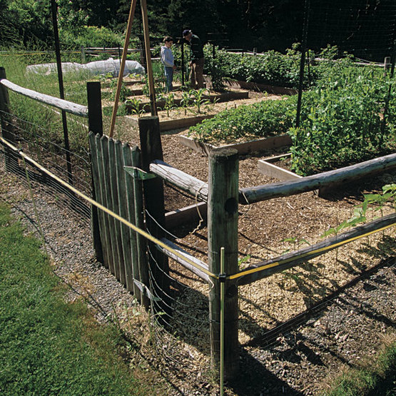 Fenced In Areas Compared >> Deer Proof Electric Fence Finegardening