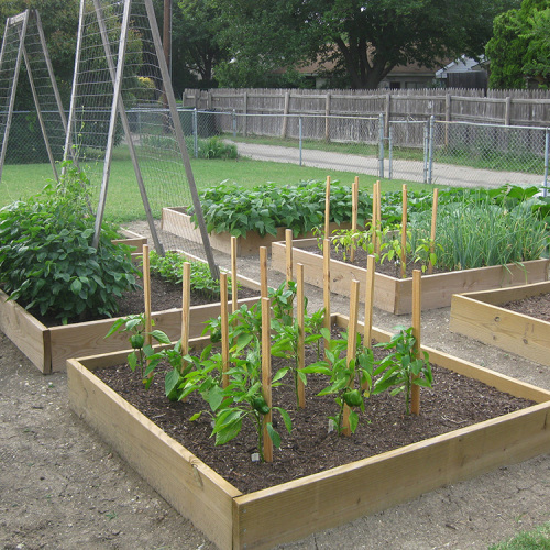 Setting Up A Garden Drip Irrigation System Finegardening