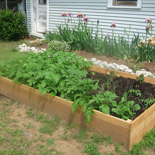 Raised Beds For Your Garden Framing Materials Finegardening