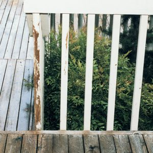 2. Maintain airspace between decks and shrubbery.