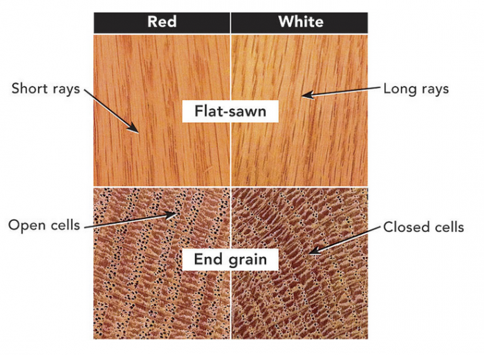 Red Oak Vs White Oak Key Differences Fine Homebuilding