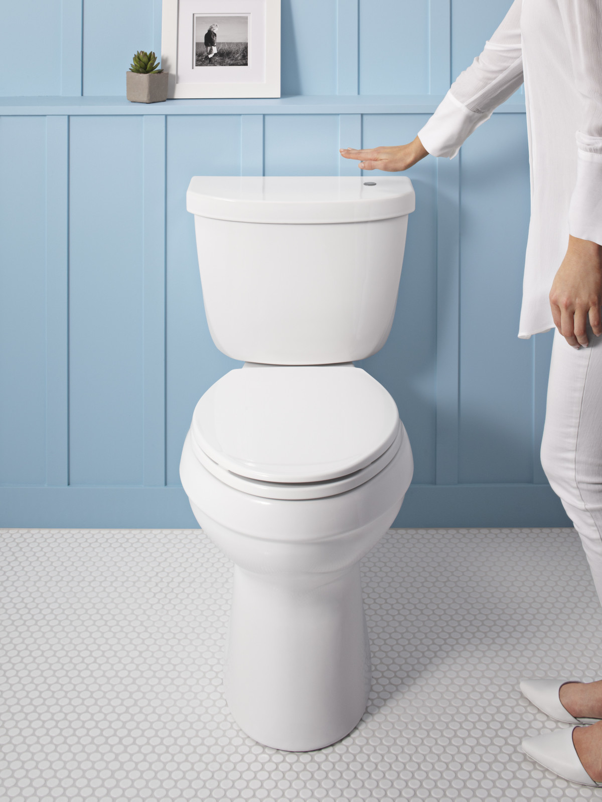 A toilet with a germ-free flush - Fine Homebuilding