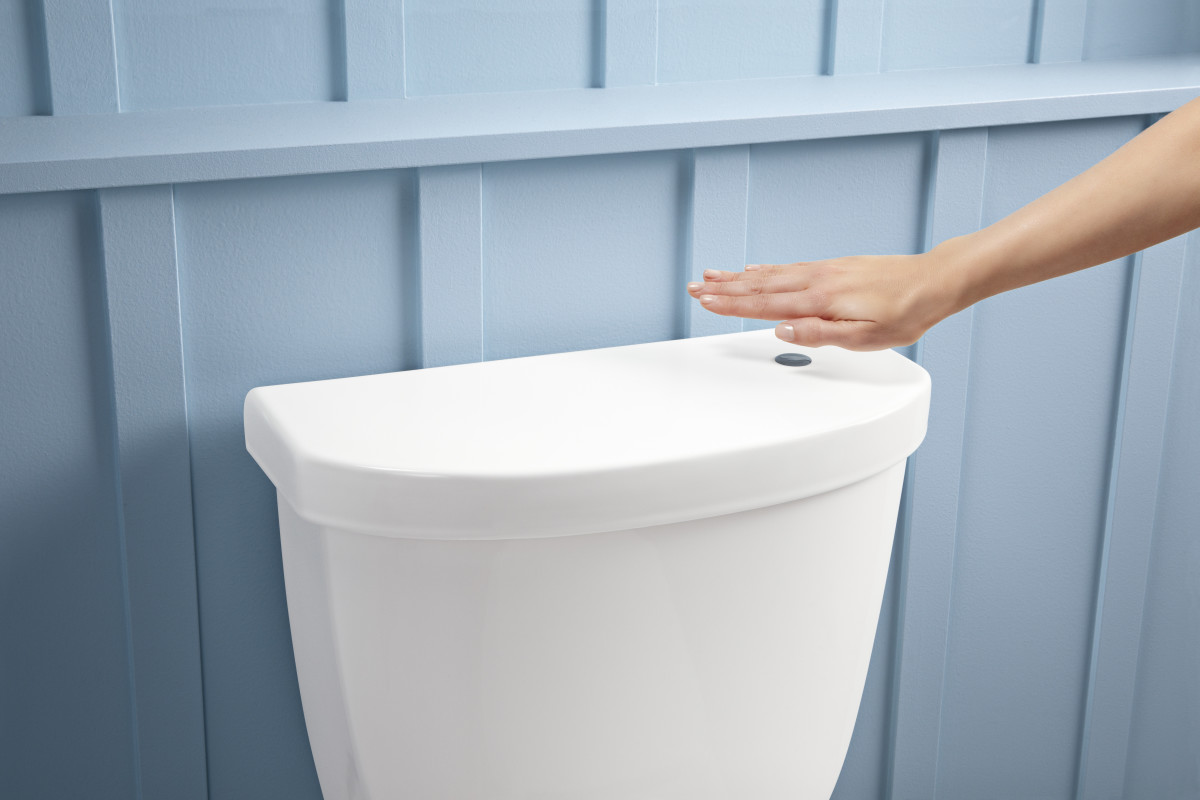 A Toilet With A Germ Free Flush Fine Homebuilding