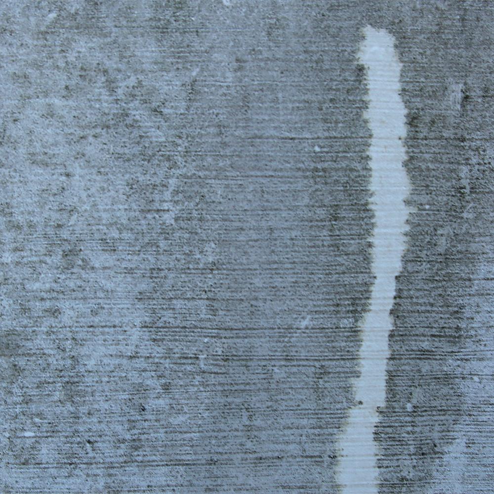 paint with mildew