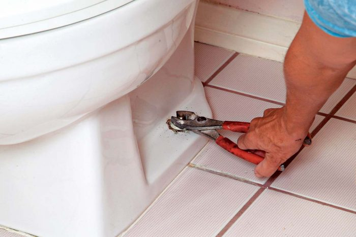 Use pliers or a wrench to remove the toilet hold-down nuts from the flange bolts.