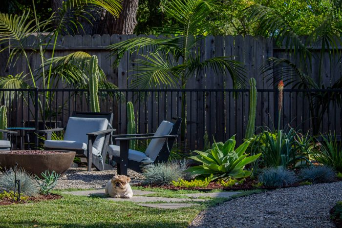 Landscaped backyard with a dog sitting on the grass
