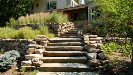 Steps leading up to a house surrounded by stone and plants