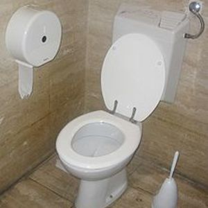 220px-Toilet_with_flush_water_tank