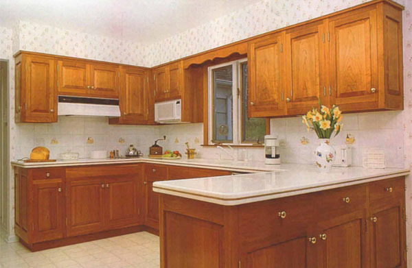 Peachy Designing And Building Kitchen Cabinets Finewoodworking Interior Design Ideas Lukepblogthenellocom