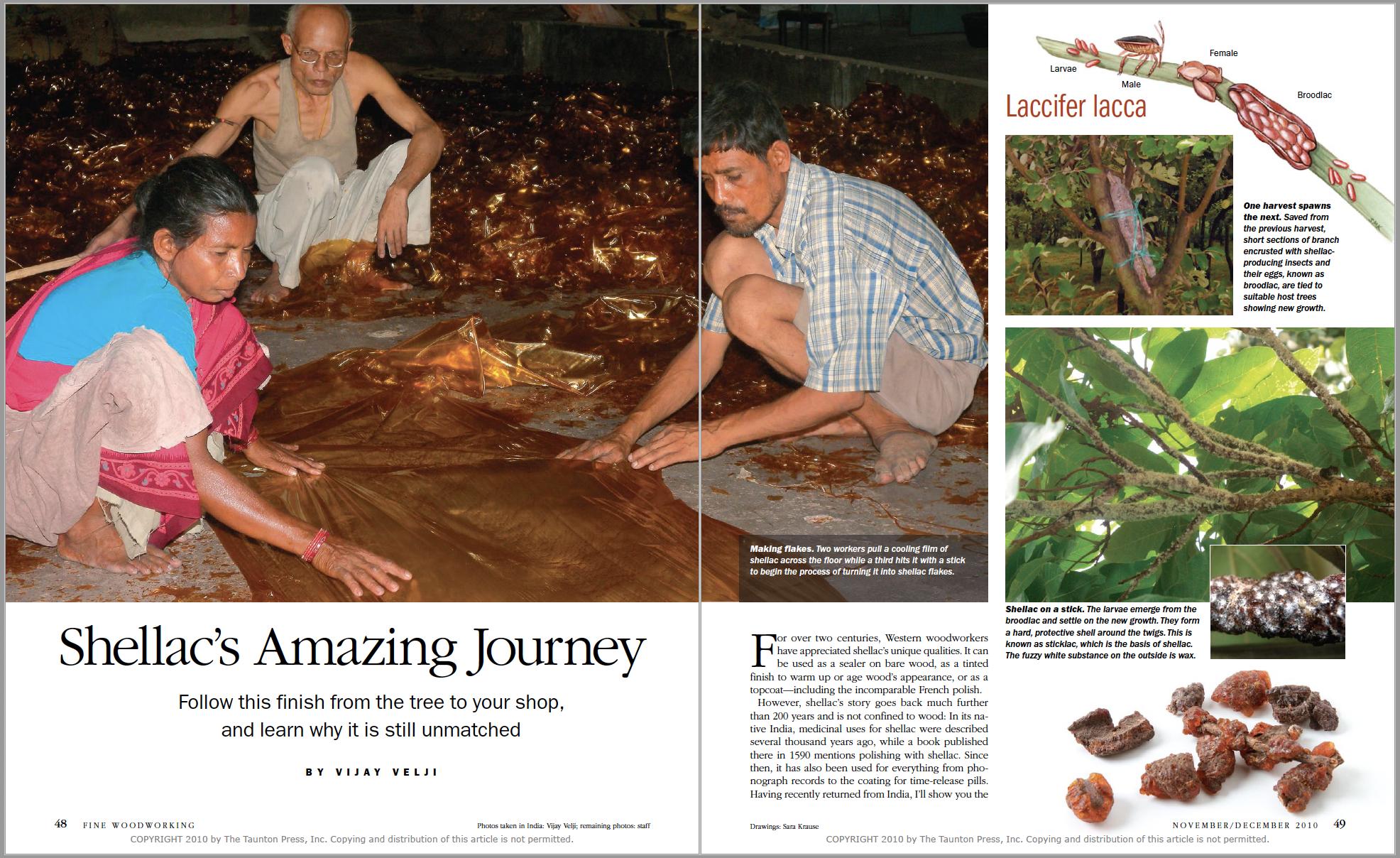 Shellac's Amazing Journey