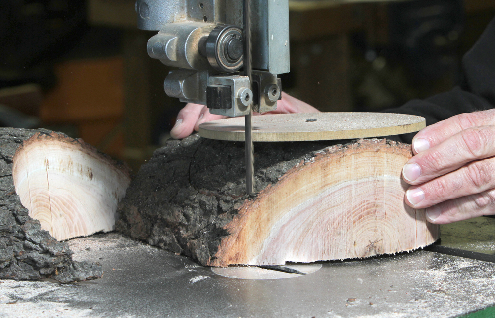 fresh log