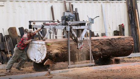 logs into lumber