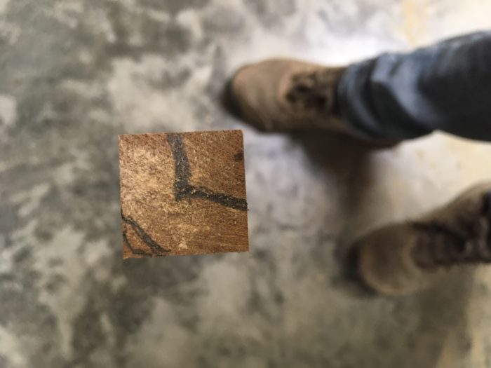 O que é madeira fina, afinal? 36