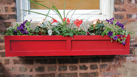 Window Box with Trim