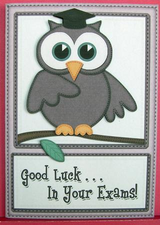 A4 Wise Owl Exam Good Luck Felties Card Topper Cup201790