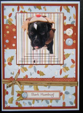 Bark Humbug Christmas Card Staffordshire Bull Terrier