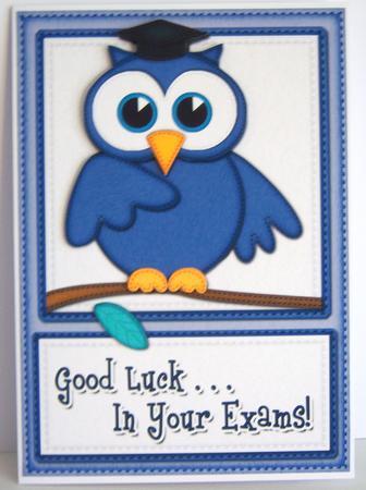 A5 Wise Owl Good Luck Exam Felties Quick Card 3d Decoupage Cup292320 359 Craftsuprint