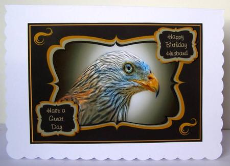 Red Kite Birthday Card For Dad Son Brother Or Husband