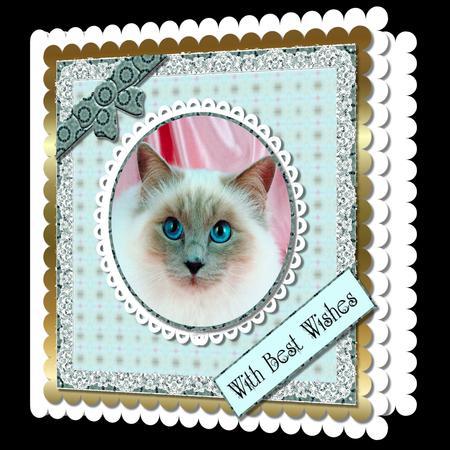 Mix'n'match - Blue Eyed Cat - CUP587841_66 | Craftsuprint