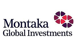 Montaka Global Investments