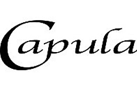 Capula Investment Management