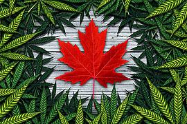 Canada Recreational Cannabis Legalization 2018
