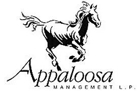 Appaloosa Management