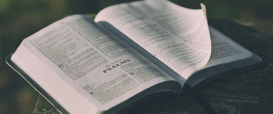The Heart of the Psalms | Nathaniel Peters | First Things