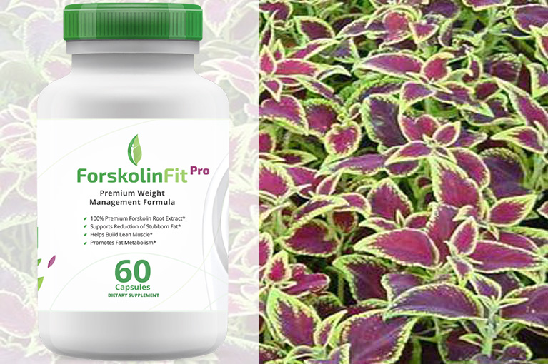 forskolin-reviews