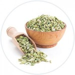 Fennel-Seeds-300x300