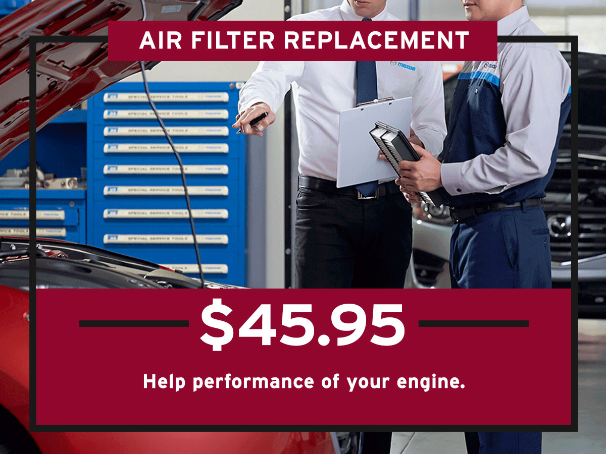 Air Filter Replacement Service Special