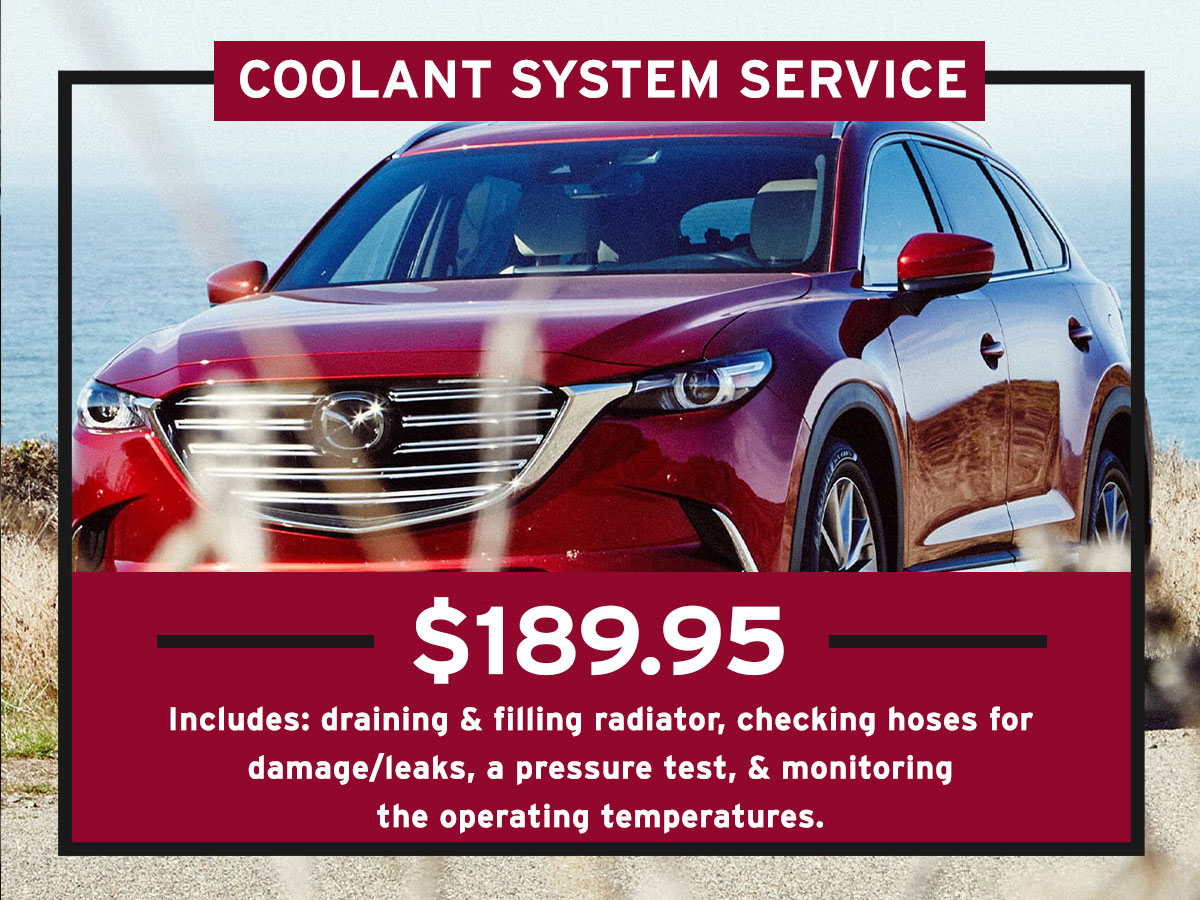Coolant System Service Special