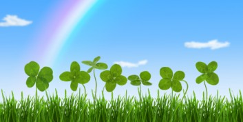 Looking for the best Ireland jobs in a field of four leaf clovers